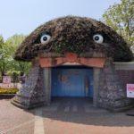 とちぎわんぱく公園に行ってみた!桜や鯉のぼりのなどイベントをご紹介!